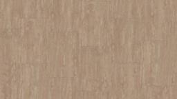 Cinnamon-Biscuit.jpg