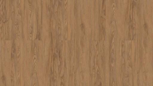 Oiled-Oak.jpg